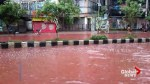 Rivers of blood flow down streets of Dhaka after Eid animal sacrifices