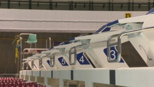 Pan Am Pool reopening after months of renovations