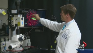 Cancer research breakthrough