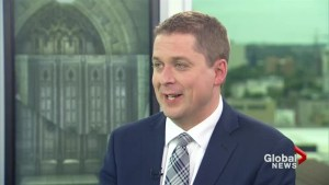 Too much appeasement to China ahead of possible trade negotiations: Scheer