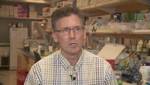 B.C's cutting-edge cancer research