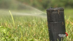 Municipal water restrictions