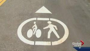 Bike Lane Rules