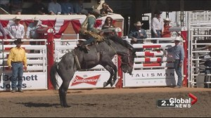 Calgary Stampede hopeful amid economic turmoil