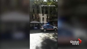 Amateur videos show people fleeing the scene, seeking shelter following Barcelona van incident
