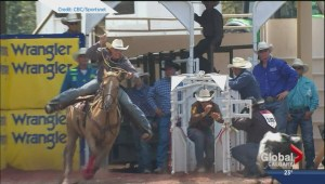 Stampede roper Tuf Cooper suspended for whipping horse