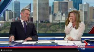 Global Edmonton's most-watched video of 2015