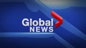 Global News at 5 Edmonton: March 14