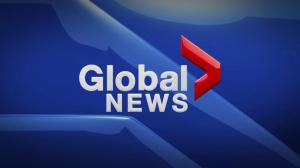 Global News Hour at 6 Edmonton: March 23