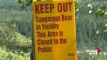 Woman recovering in Calgary hospital from bear attack