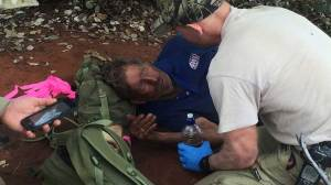 Australian man missing for 6 days in bush ate black ants to survive