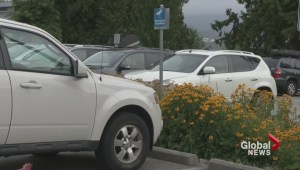 Port Moody approves pay parking at Rocky Point Park
