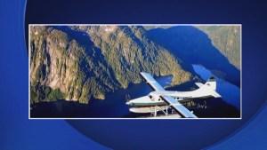 9 killed in plane crash during sightseeing tour in Alaska