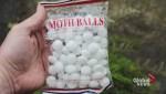 Port Moody food hamper mothball mix up