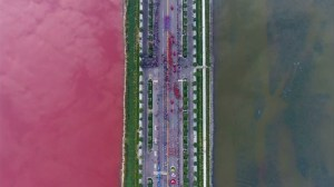 Everyone puzzled by salt lake in China turning red