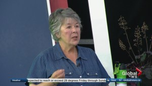 Horticulturist Kath Smyth answers some viewer gardening questions