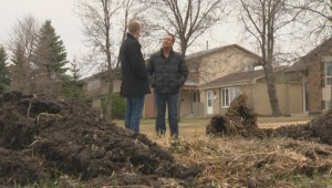 Transcona residents concerned with 'dangerous eyesore' left behind by snowplows