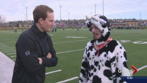 The rematch: Brendan Parker and The World's Fastest Cow