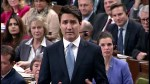 Trudeau responds to backlash on Trump putting tariffs on softwood