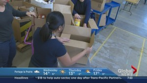 International volunteers making a difference in the city at Winnipeg Harvest