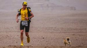 Incredible story of Gobi the dog and ultramarathoner Dion Leonard