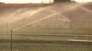 California facing possibility of massive drought