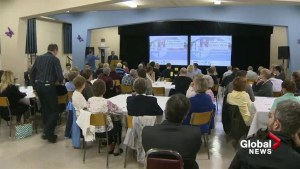 Valois Village's future up for debate