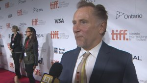 "TIFF Red Carpet: Actor Danny Webb from the film ""A Little Chaos"""