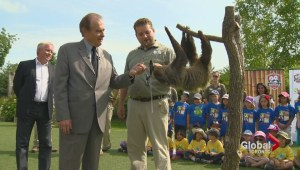 Toronto deputy mayor gives scroll to zoo sloth after World Cup prediction