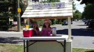 Lemonade stand ambitions soured by red tape