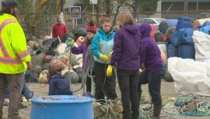 Raw: Sorting marine garbage in Delta