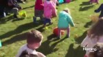 Easter egg hunt cancelled because of crazy parents