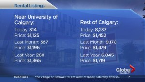 Navigating the rental market for post-secondary students