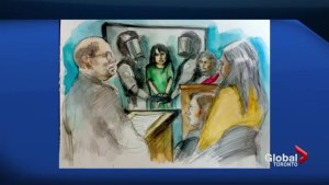 Toronto woman facing list of terror charges forced to appear in court