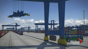 Deltaport expansion controversy