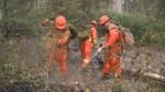 Canadian Forces battle wildfire in northern Saskatchewan