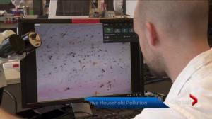 B.C. study into potentially harmful microfibres