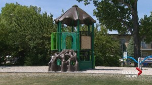 Recall forces City of Calgary to remove 55 playground slides in the city