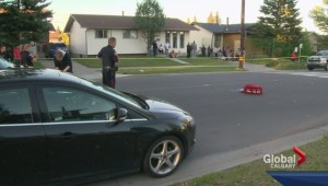 Second hit and run in Calgary along Temple Drive