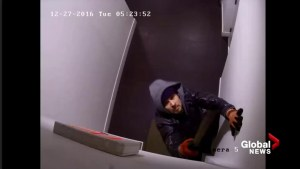 New Westminster apartment mail theft suspect