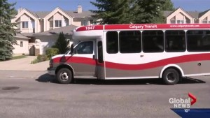 A Calgary City Transit bus gets taken for joy ride