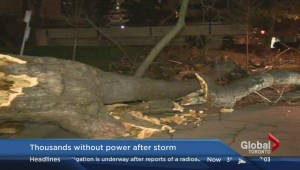 Toronto Hydro reports a number of outages