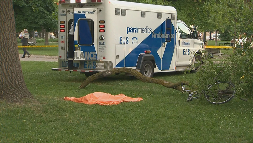 Man Dead After Being Struck By Tree Branch In Popular Toronto Park