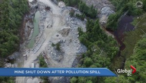 Mine shut down after pollution spill at Yellow Giant gold mine