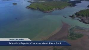 Scientist express concerns about Flora Bank