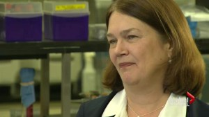 The Ministers: Jane Philpott takes charge of Canada's health care system