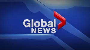 Global News at 5 Edmonton: Feb. 21