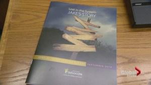 Children's Advocate report