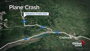 Authorities scouring area where plane reportedly went down west of Calgary