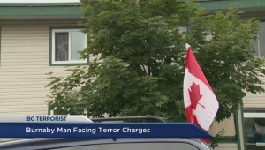 Analysis of terrorism charges